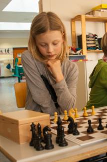 Schach_7981a